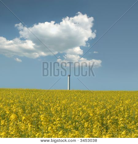 Blooming Rape Field In Front Of A Smokestack