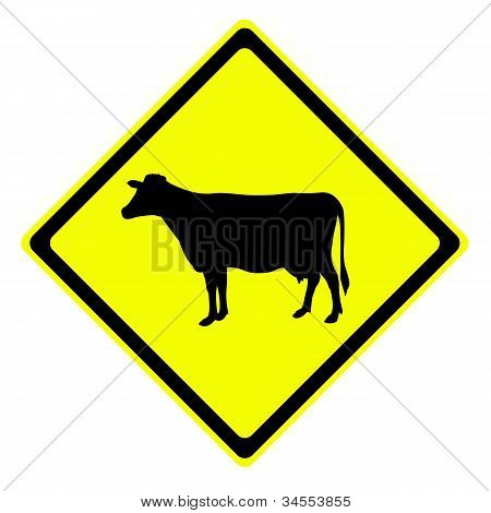 Cow In Warning Traffic Sign