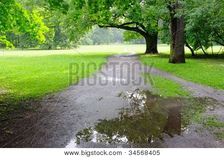 Park on rainy day