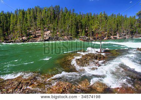 Yellowstone River Rapids