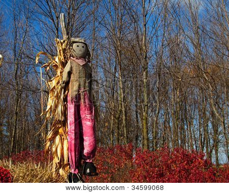 Standing Scarecrow