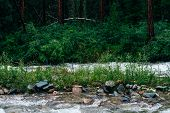 Atmospheric Woodland Landscape With Mountain Creek In Dark Forest. Beautiful Mystery Taiga With Wild poster