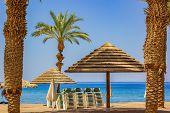 Idyllic Sand Beach Resort Scenic Landscape Destination Of Red Sea Waterfront With White Lounge Furni poster
