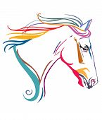 Colorful Decorative Ornamental Contour Portrait Of Running Horse With Long Mane, Looking  In Profile poster