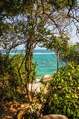 Caribbean Beach With Tropical Forest In Tayrona National Park, Colombia. Tayrona National Park Is Lo poster