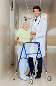 stock photo of zimmer frame  - Full length portrait of a young male doctor assisting senior woman with her walker - JPG