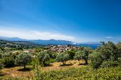 Beautiful panoramic view on Olive groves and Agriovotano village in the background,  Evia island.  G poster