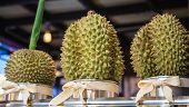 Fresh Ripe Delicious Sweet Green Durian Fruits For Sale On Market Stall. Durian, The King Of Fruit,  poster