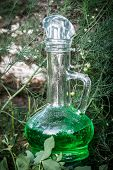 Glass Vessel With Green Herbal Potion In The Woods. poster
