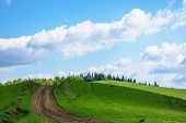Dirt Road Uphill The Green Hill. Grass Covered Meadow In Dappled Light. Path Leads To Coniferous For poster