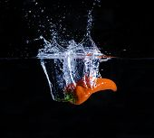 Red Fresno pepper, splashing in water