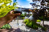 Hand Holding A Glass Of Red Wine Selective Focus View, Outdoor Wine Tasting Winery Concept Backgroun poster