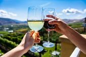 Happy Couple Hands Cheering Red And White Wine Glasses From A Winery Tasting Room Terrace Against Gr poster