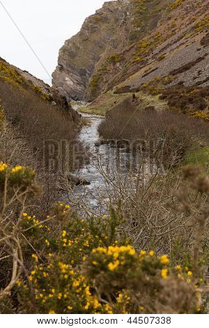Heddon Valley Exmoor Devon