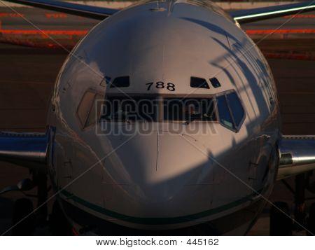 Aircraft Nose 3