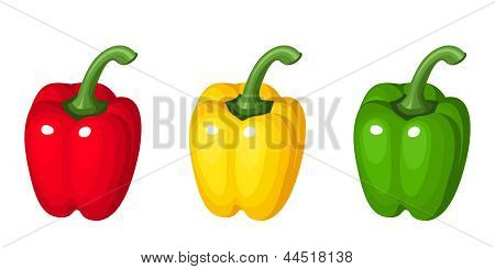 Set of three bell peppers. Vector illustration.
