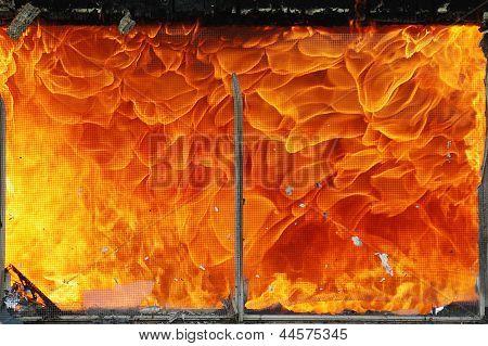 Queima de fogo