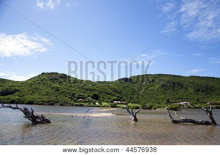 Grand Saline at St. Barths, French West Indies