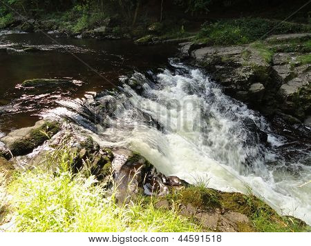 River Forest Waterfall Landscape