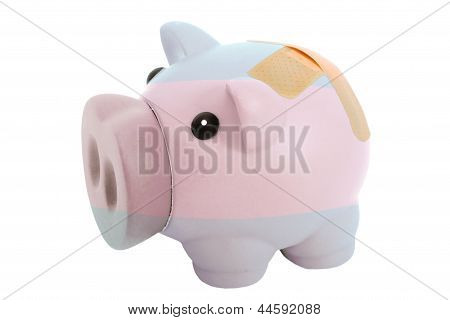 Closed Piggy Rich Bank With Bandage In Colors National Flag Of Argentina