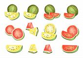 Set of Delicious Fresh Red and Yellow Watermelons