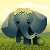 Baby Animal Collection: Elephant poster
