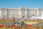 The Buckingham Palace.