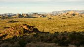 stock photo of superstition mountains  - Cacti dot the mountains and hills of Arizona - JPG