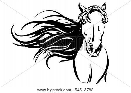 horse hand drawn vector llustration realistic sketch
