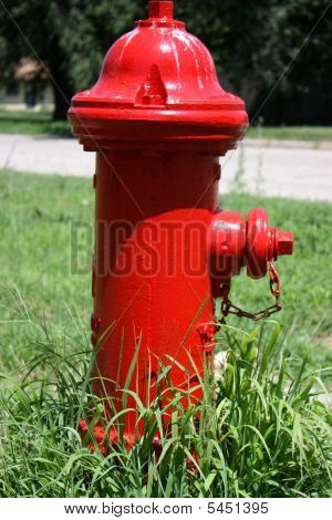 Red Fire Hydrant
