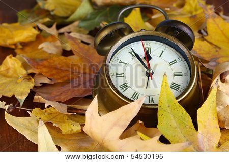 Old clock on autumn leaves close-up