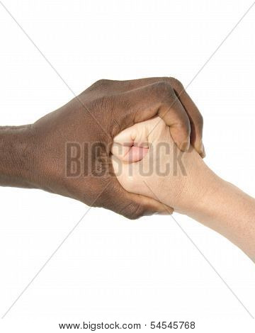 Mixity - Two joint hands symbolizing diversity