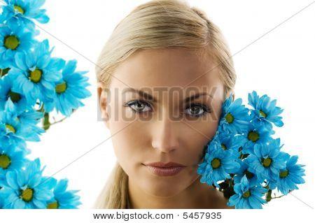 The Blue Daisy