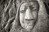 Buddha head in tree roots at Wat Mahathat, Ayutthaya, Thailand. Ancient stone face sculpture in Asia. Famous travel destination  poster
