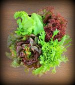 pic of iceberg lettuce  - Green and red lettuce  - JPG