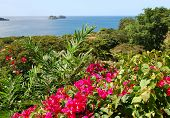 picture of papagayo  - Beautiful Pacific Ocean view - JPG