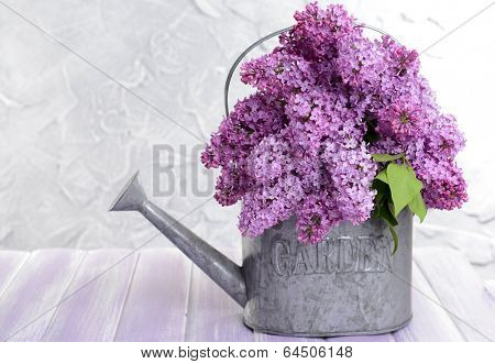 Beautiful lilac flowers in watering can on table on light background