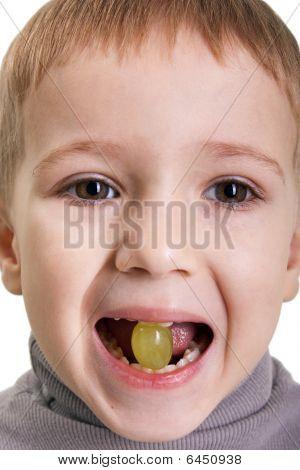 Tasting Grape