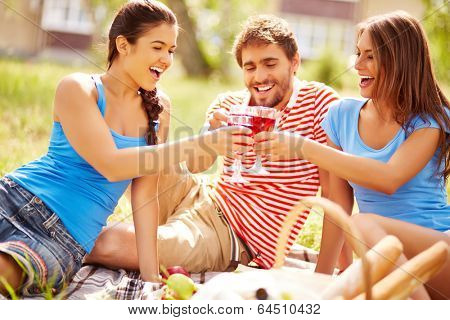 Happy young friends toasting with wine at picnic in the country