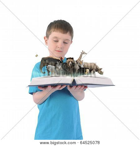 Boy Holding Book Of Wild Animals On White Background