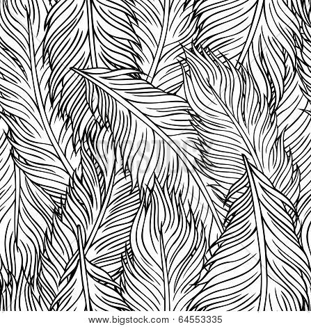 hand-drawn feathers