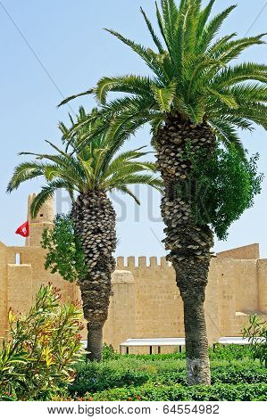 Palms And Ribat In Monastir, Tunisia