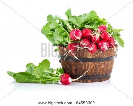 Fresh ripe radish vegetables harvest in wooden bucket. Isolated on white background