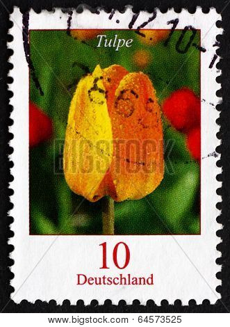 Postage Stamp Germany 2005 Tulip, Flowering Plant