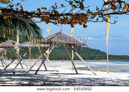 Tropical Beach In Anda,  Philippines