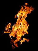 picture of combustion  - Orange fire flames on a black background - JPG