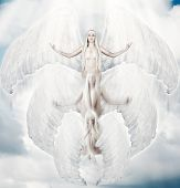 picture of ascension  - Flying white angel in move with big wings to sun light - JPG