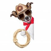 image of mexican-dog  - cool cowboy dog behind white blank banner or placard - JPG