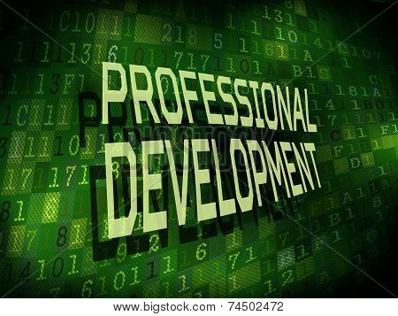 Professional Development Words Isolated On Digital Background