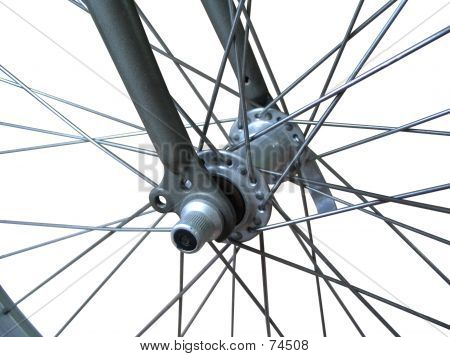 Bicycle Spokes (isolated)